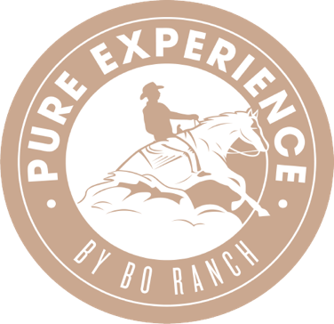 PURE EXPERIENCE BY BO RANCH_1204_logo